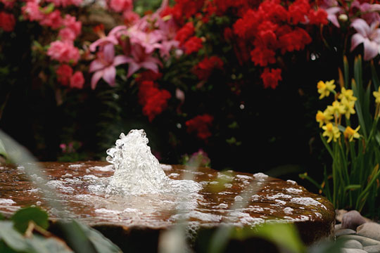 bubbling fountain in a flower garden
